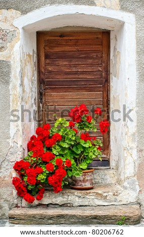 Red roses decorating front of old wooden door