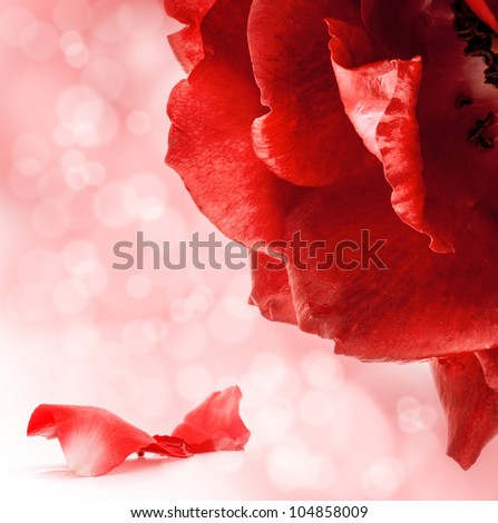 Red roses, greeting card, background