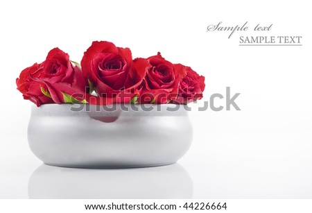 Red roses in a silver bowl on white background with space for text