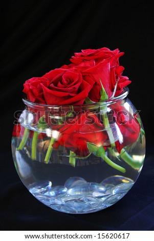 Kirkland's: Red Rose Vase