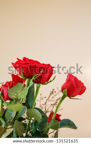 Red Roses in bouquet on a beige background