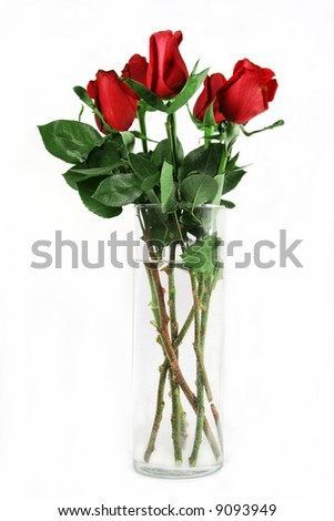 Red roses in vase on white background