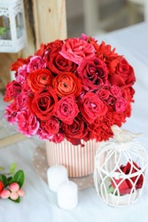Red roses in white pot