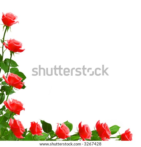 love poems with roses. roses love poem red roses poem