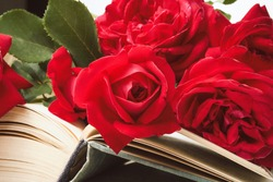 Red roses on an open book on a light stone background. The concept of romantic literature. Flat lay, top view