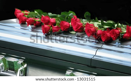 red roses on casket