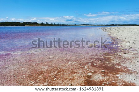 Red shoreline of a lake