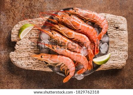 Red shrimps gourmet wild ocean jumbo shrimps.
