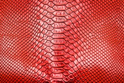 Red snake skin pattern texture background