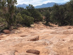 Red soil and rocky washout terrain surrounded by desert scrub brush with mountain range in the distance.