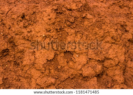 red soil earth texture background for plants india realistic closeup background #1181471485