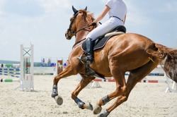 Red sports horse moving at a gallop on the outdoor equestrian show jumping competitions at the summer