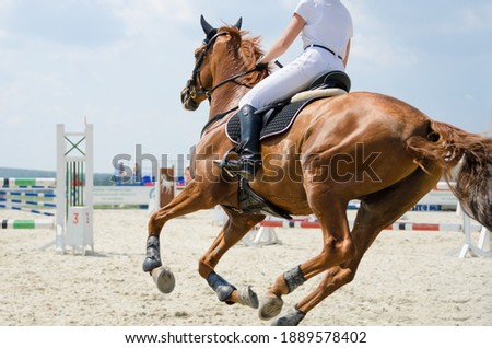 Red sports horse moving at a gallop on the outdoor equestrian show jumping competitions at the summer Stockfoto ©