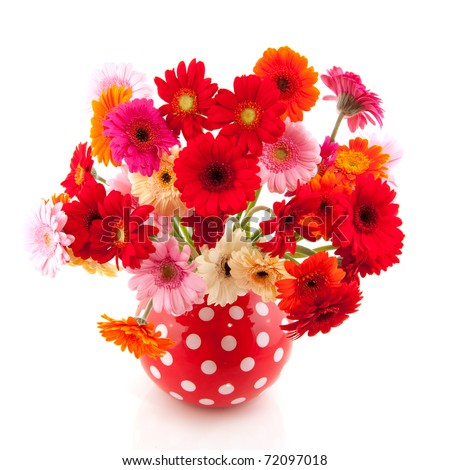 Red spotted vase with colorful bouquet of Gerber