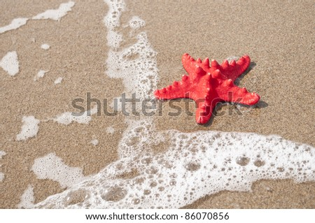 Red starfish and sea wave on sandy tropical beach