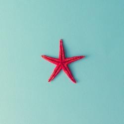 Red starfish on pastel blue background. Minimal summer flat lay.