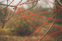 Red threads stretched on the branches of a tree