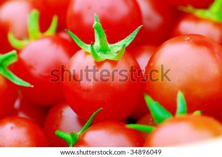 red tomatoes cherry. Cherry tomatoes close-up.