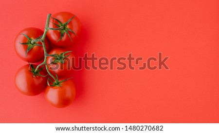 Red Tomatoes Close Up. Fresh Organic Tomatoes on Red Background, Directly from Above with Copy Space. Group of Objects, Healthy Eating, Healthy Lifestyle, Product