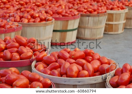 Red Tomatoes in Bushels at a Farmer's Market