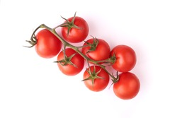 Red tomatoes on a vine isolated on a white background.