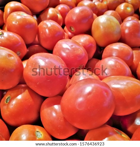 Red tomatoes or cherry tomatoes background. Group of tomatoes or group cherry tomatoes. #1576436923