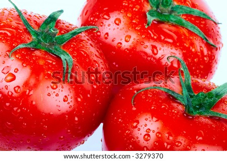 Red tomatoes. over white background