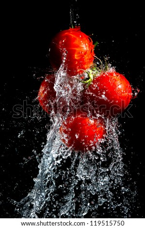 Red tomatoes washed in water drops isolated on black baclground