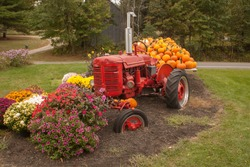 Red Tractor and Orange Pumpkins