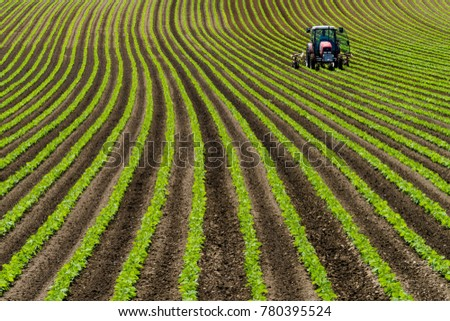 Red tractor in soy beans row farm summer Hokkaido  Japan