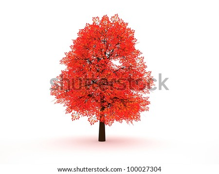 Red tree on white background