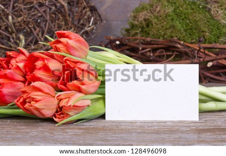 red tulips and card/tulip/spring