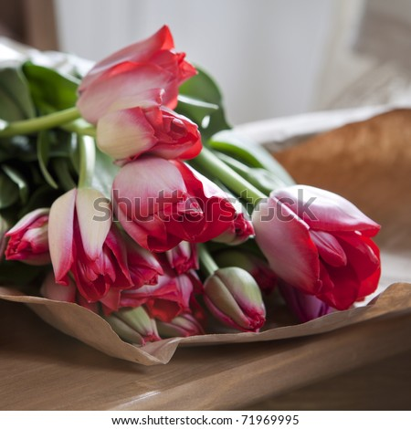 red tulips in paper lying on chair in kitchen