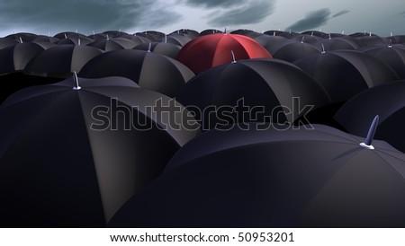 Pasotti Black  Red Dahlia Umbrella - Raindrops Umbrellas