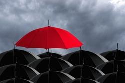 Red umbrella in mass of black umbrellas.