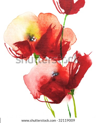 Red watercolor poppies on white, handpainted by photographer
