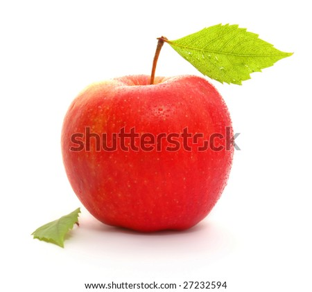 Red wet apple with leaf isolated on white