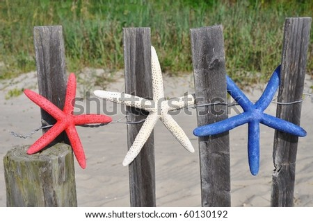 Red, white and blue starfish on a beach fence