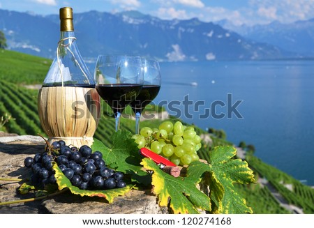 Red wine and grapes on the terrace of vineyard in Lavaux region, Switzerland