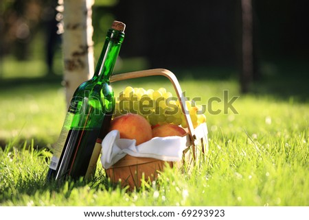 Red wine and picnic basket with fruits