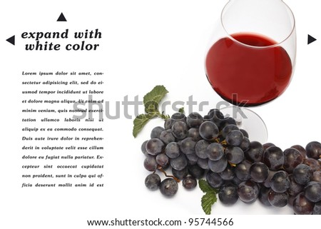 red wine banner with space to copy