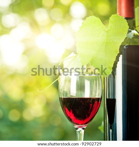 Red wine bottle, one glass and young vine against natural spring background