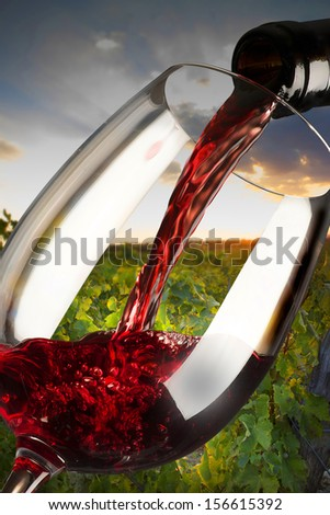 red wine glass in the wine