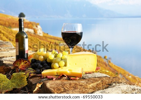 Red wine, grapes and cheese on the terrace of vineyard in Lavaux region, Switzerland