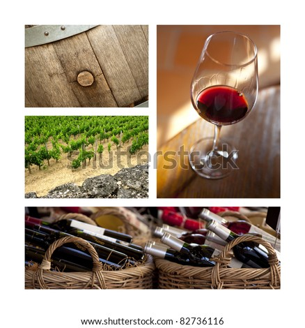 Red wine, vineyards and barrels in Bordeaux