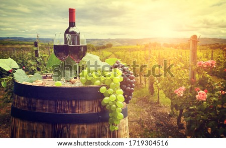 Red wine with barrel on vineyard in green Tuscany, Italy Photo stock ©