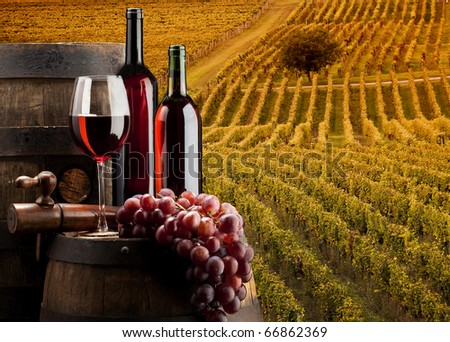 red wine with vineyard