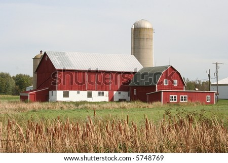 red Wisconsin dairy barn in fall