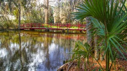 Red wooden footbridge over a blackwater swamp at Magnolia Plantation in the low country of Charleston, South Carolina.