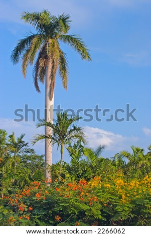 Red yellow flowers and a palm tree ez canvas red yellow flowers and a palm tree mightylinksfo